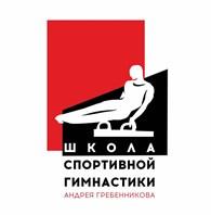 Школа спортивной гимнастики Андрея Гребенникова