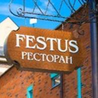 """""""FESTUS"""""""