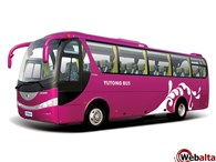 ИП Bussnes Bus Kirov