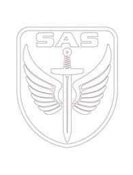 """""""SAS"""""""