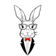 Cafe & Bar White Rabbit