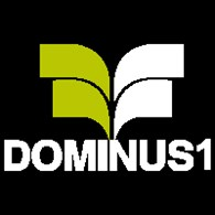 Доминус