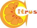 Рекламноеагентство«Citrus»