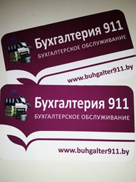Бухгалтерия 911