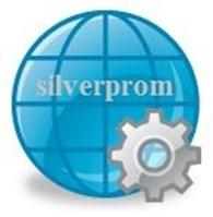 Фирма Силвер