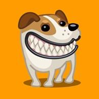 Передержка собак в Саратове - Dogdays