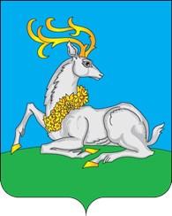 ИП Шары - Одинцово