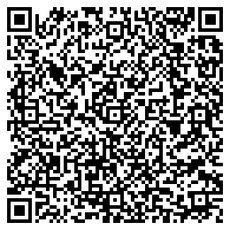 QR-код с контактной информацией организации Рио-Пицца
