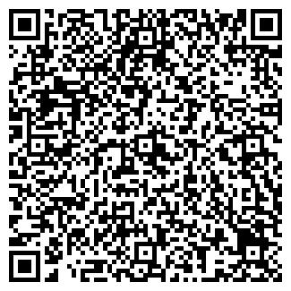 QR-код с контактной информацией организации Лаяна