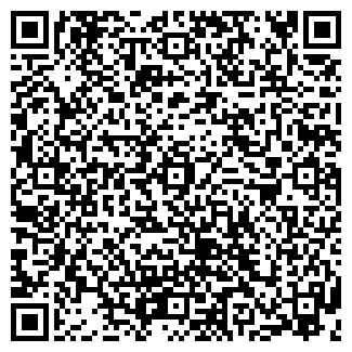 QR-код с контактной информацией организации ООО ДИМ-СЕРВИС