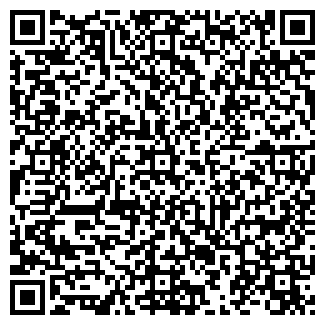 QR-код с контактной информацией организации ВСМ, ООО