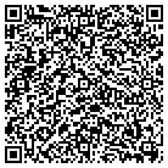 QR-код с контактной информацией организации ИП Ефремов И.Ю.