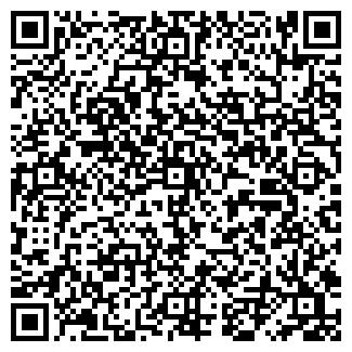 QR-код с контактной информацией организации Субъект предпринимательской деятельности Prostoved