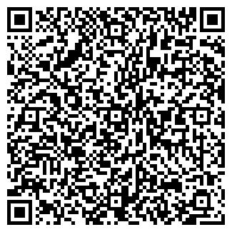 QR-код с контактной информацией организации Мачо, ИП