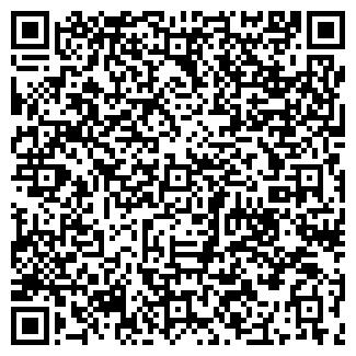 QR-код с контактной информацией организации ВИП ЛАЙН, ООО
