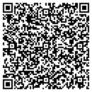 QR-код с контактной информацией организации ООО E-MAX Asia