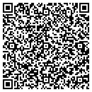 QR-код с контактной информацией организации Алибаев, ИП
