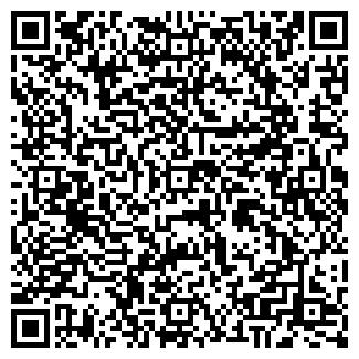 QR-код с контактной информацией организации Виз, ТОО