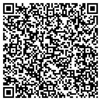 QR-код с контактной информацией организации Альвин, ТОО