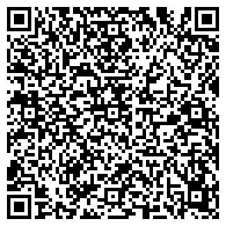 QR-код с контактной информацией организации Бак, ИП