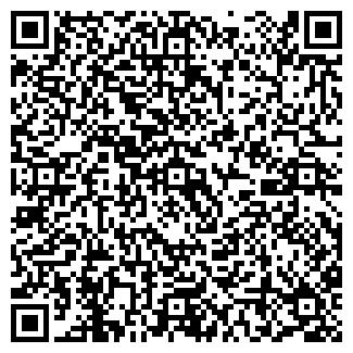 """QR-код с контактной информацией организации ООО """"Видеале"""""""