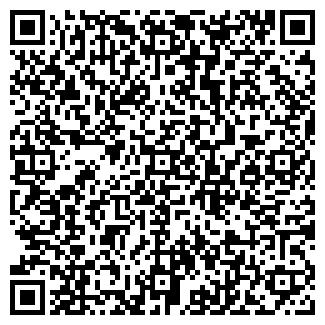 """QR-код с контактной информацией организации ООО """"Наносвет"""""""