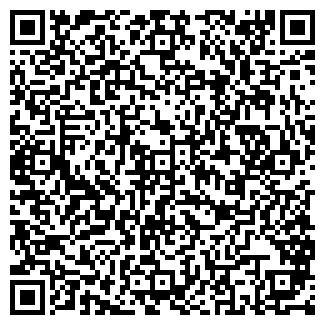 QR-код с контактной информацией организации Bishkek Elektrik