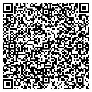 QR-код с контактной информацией организации ВИПСИЛИНГ