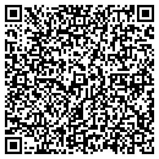 QR-код с контактной информацией организации ООО Русская пицца