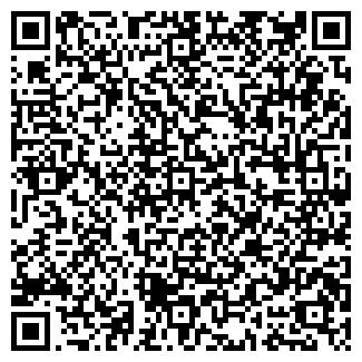 QR-код с контактной информацией организации DFM-КРАСНОДАР