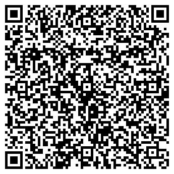 QR-код с контактной информацией организации ВИЛАНИК, НПП, МАЛОЕ ЧП