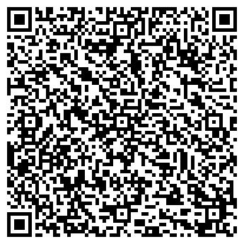 """QR-код с контактной информацией организации """"SILVER TOY*RU"""""""