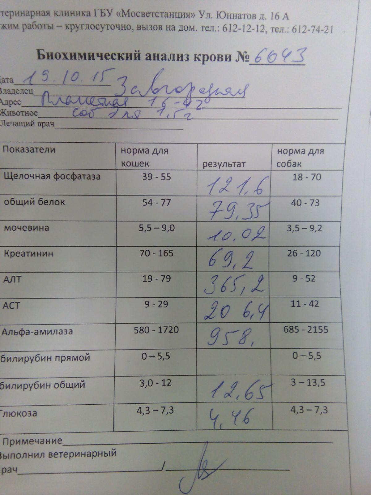 Минск быстро крови анализы форум быстро лечение цистита